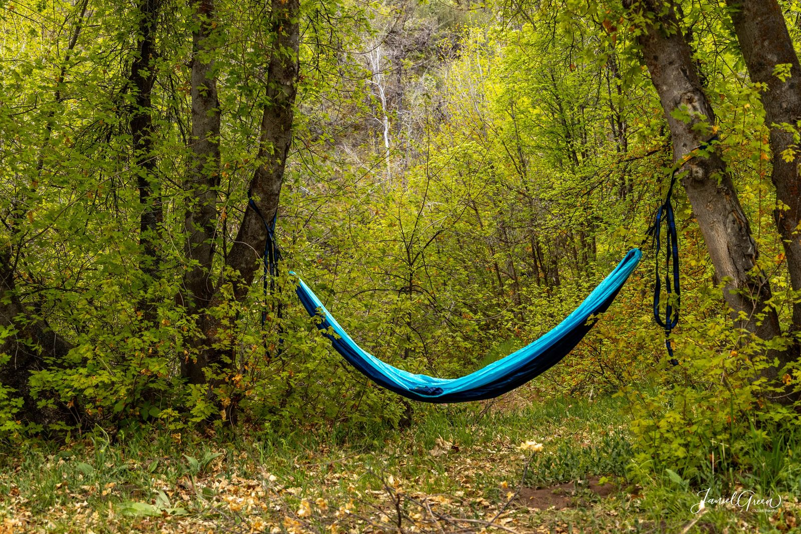 rules of camping in utah hammock strung between two trees