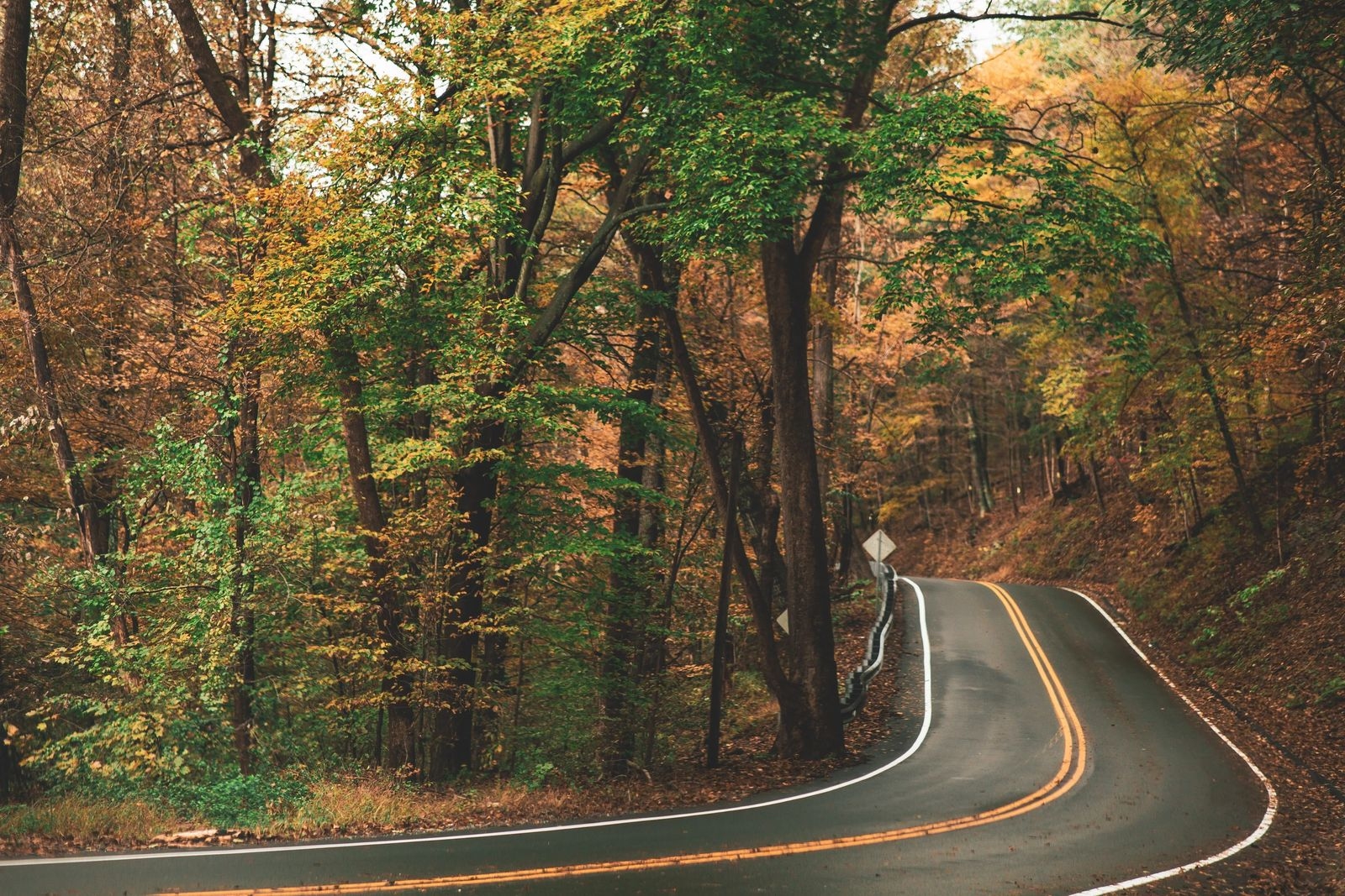 Scenic Road Trip For Fall Colors In The USA