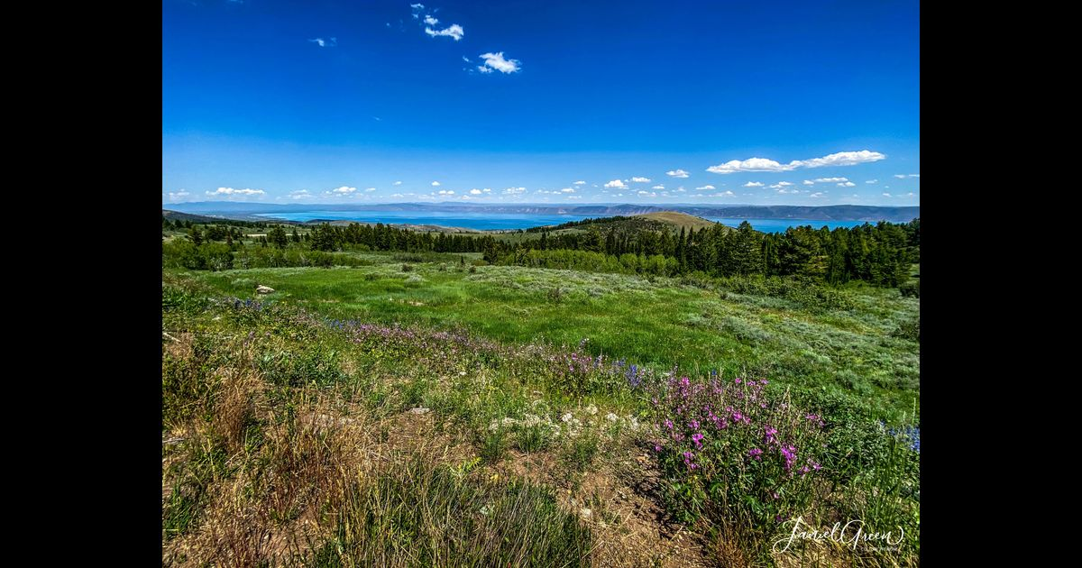 Things To Do In Bear Lake Utah - A Local's Guide